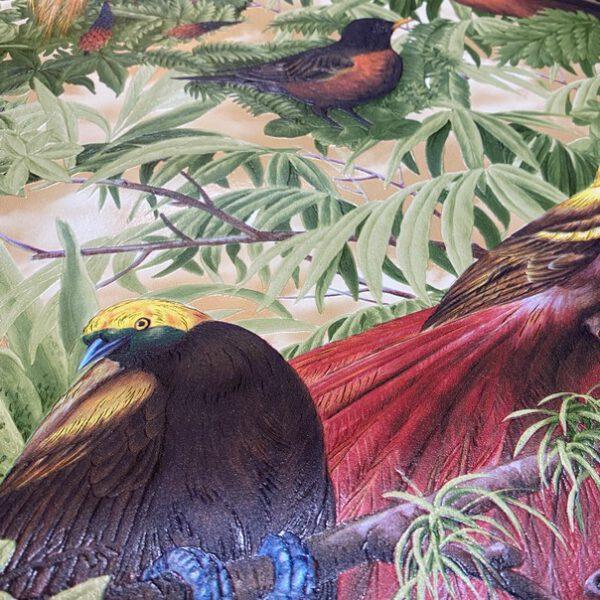 jungle-vogel-behang-6954-20
