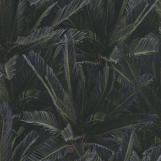 jungle-behang-619973